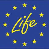 2. LIFE